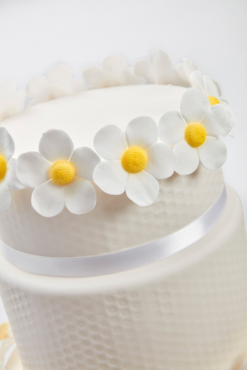 Daisy Chain & Honeycomb | Clare Anne Taylor Couture Cakes